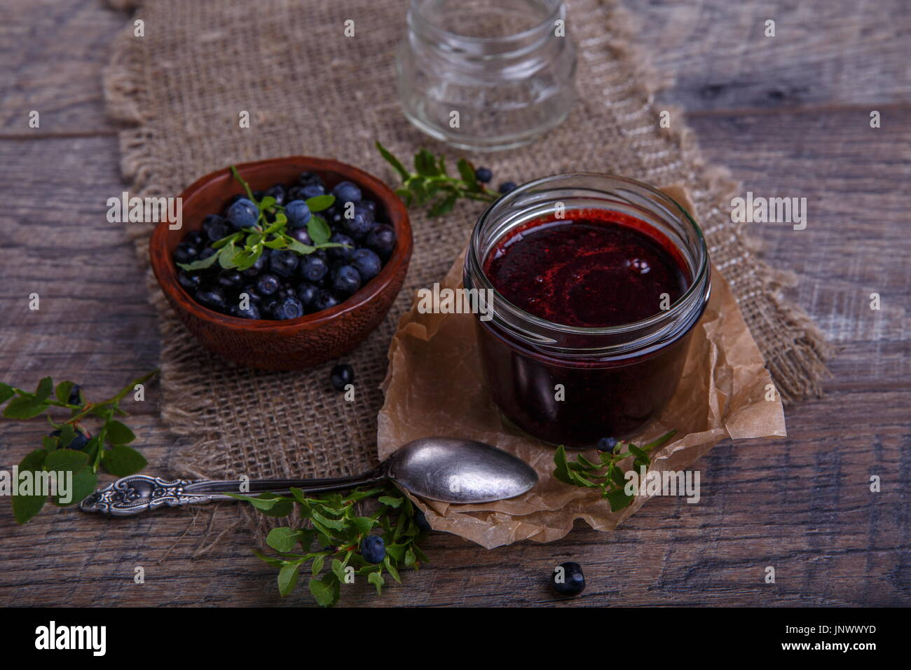 blueberry leaf stockfotos blueberry leaf bilder alamy. Black Bedroom Furniture Sets. Home Design Ideas