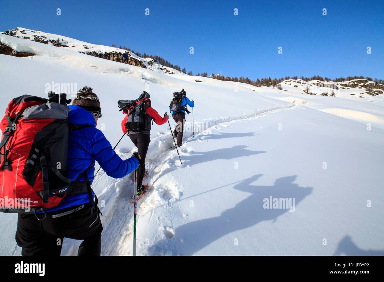 Schneeschuhwanderer entlang einer Spur über den Malojapass. Engadin. Die Schweiz. Europa Stockbild