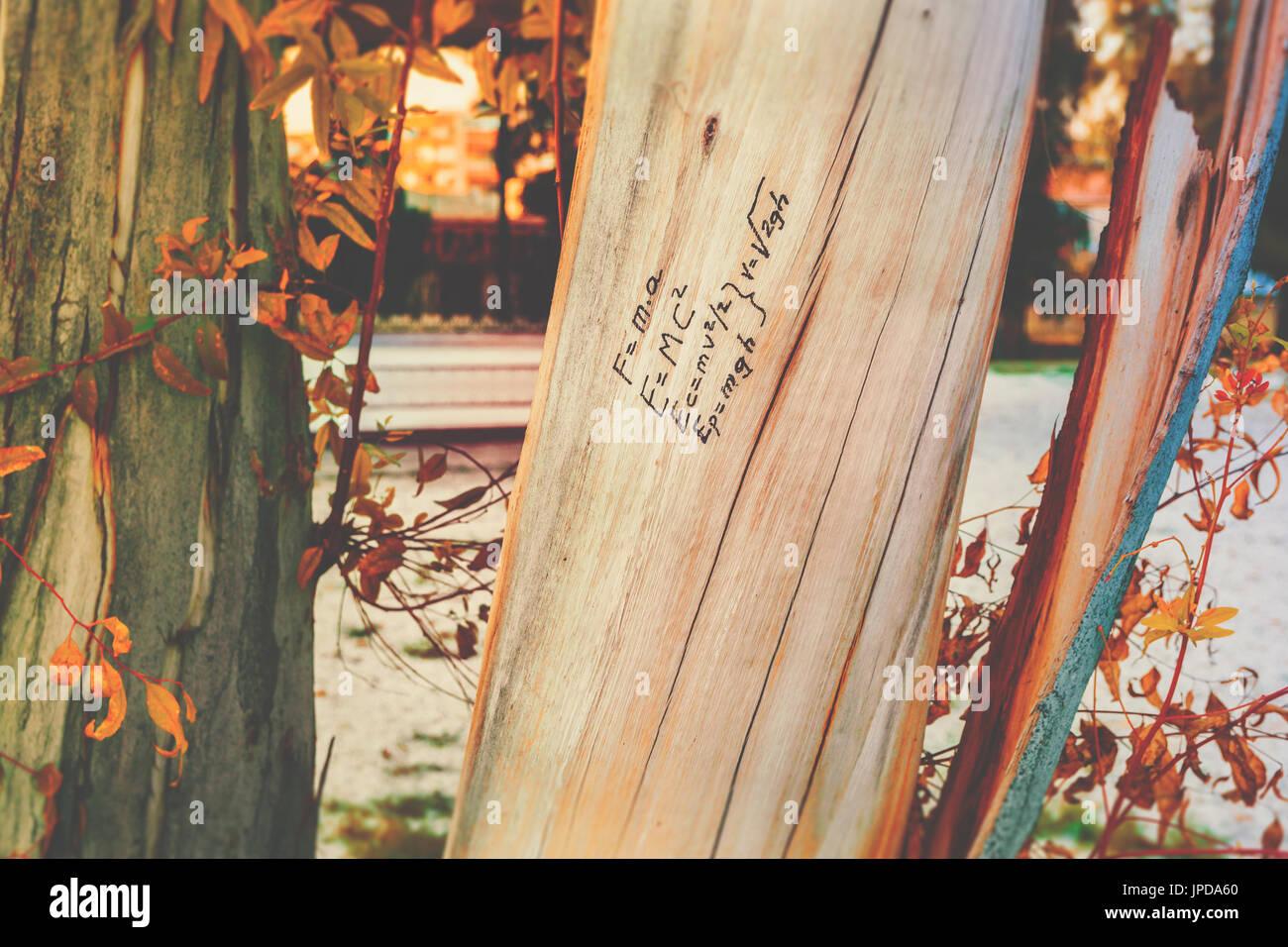 Masse-Energie-Äquivalenz Physik Formel geschrieben am Baumstamm Holz, wie von Hand gezeichnet, Doodle, Herbst Herbst-Saison, zurück zum Schulkonzept, Bildung, Hochschule Stockfoto