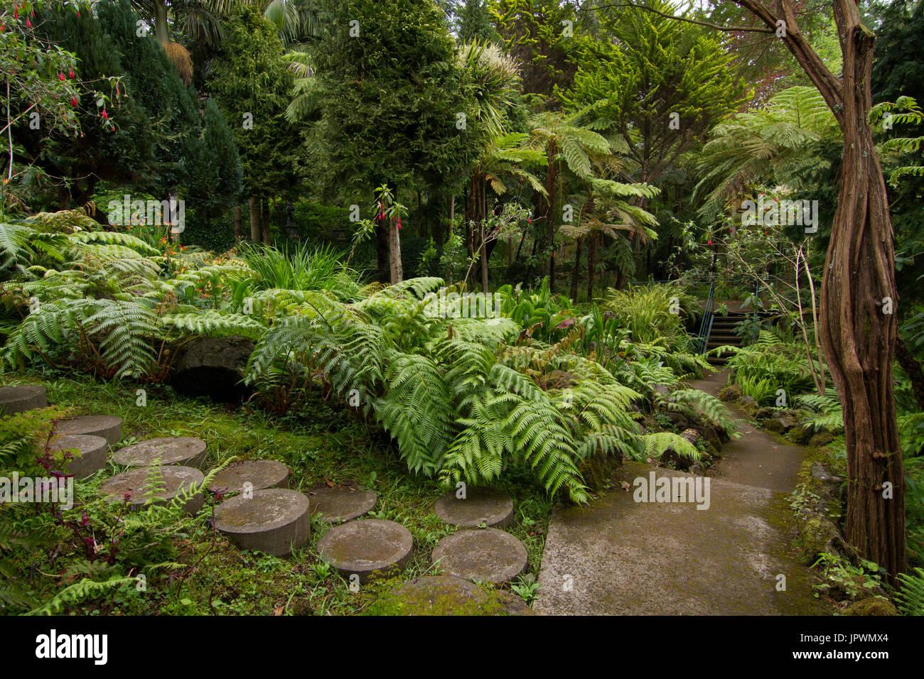 Der tropische Garten Monte Palace - Madeira Stockbild