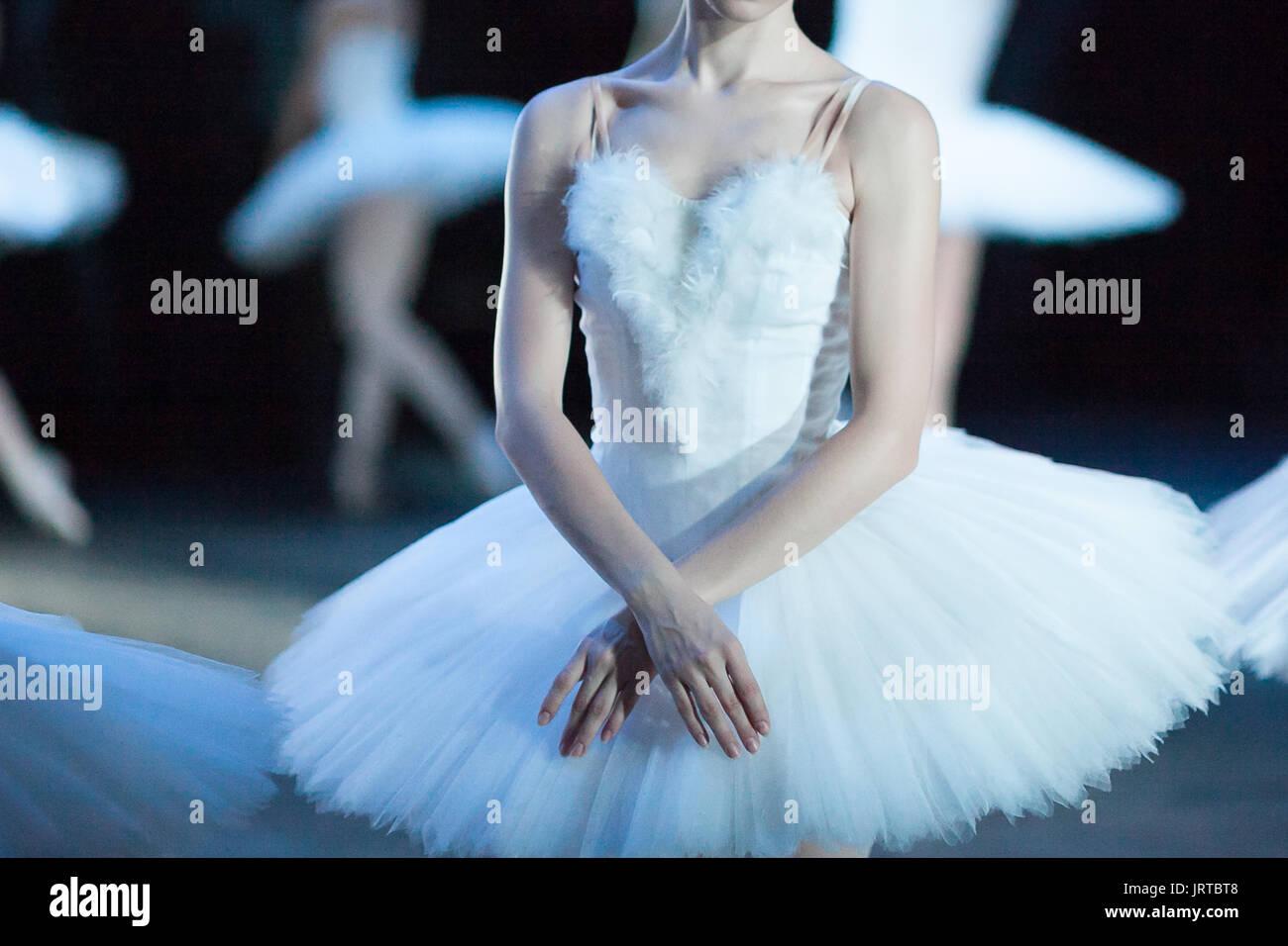 Anatomie, Schönheit, Tanz Konzept. Zarte Arme von Ballerina ...
