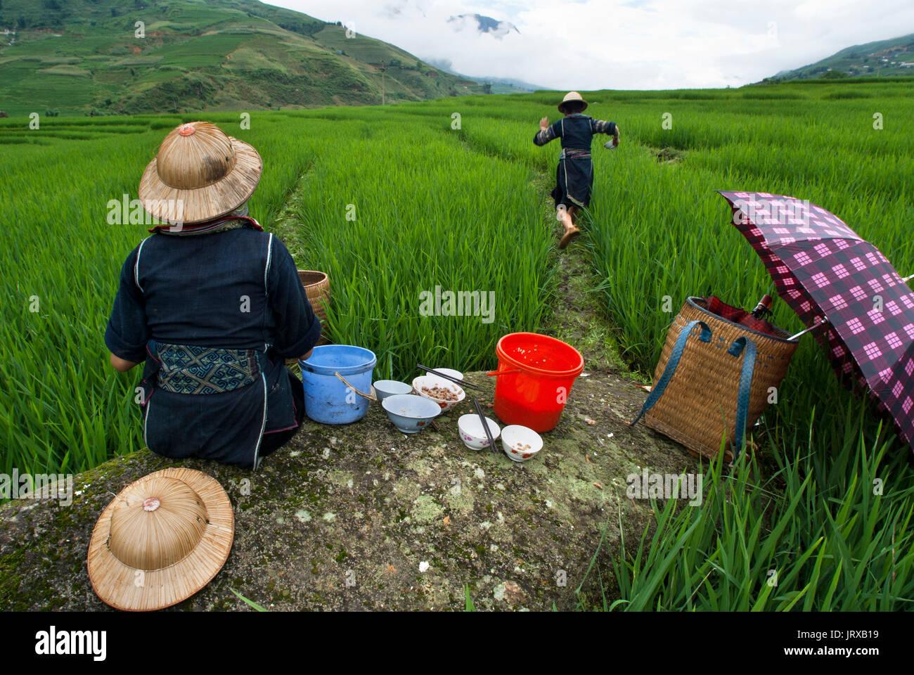 Einige Hmong Frauen essen Neben einem Reisfeld in Sapa Weg in die Dörfer in der Nähe von Lao Chai und ta Van. Vietnam. Stockfoto