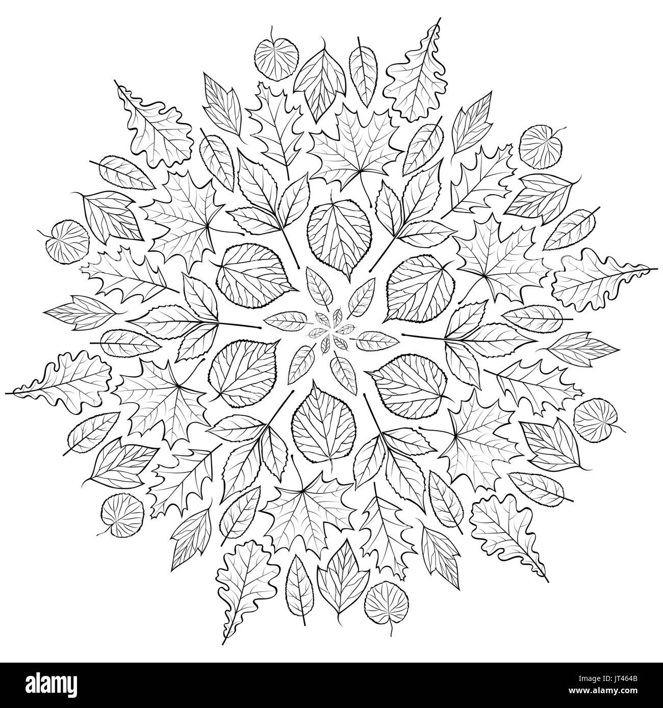 Herbst Mandala Mit Herbst Blätter Auf Weißem Hintergrund