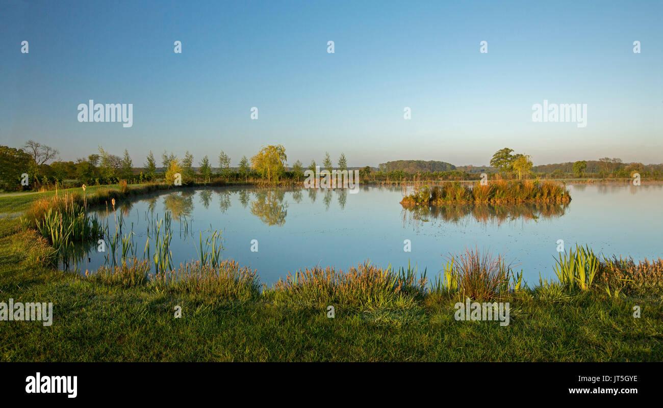 Panoramablick auf die ländliche Landschaft in der Dämmerung mit Coarse Fishing Teich gesäumt mit Grün und Gold Vegetation unter blauem Himmel in der englischen Landschaft Stockfoto