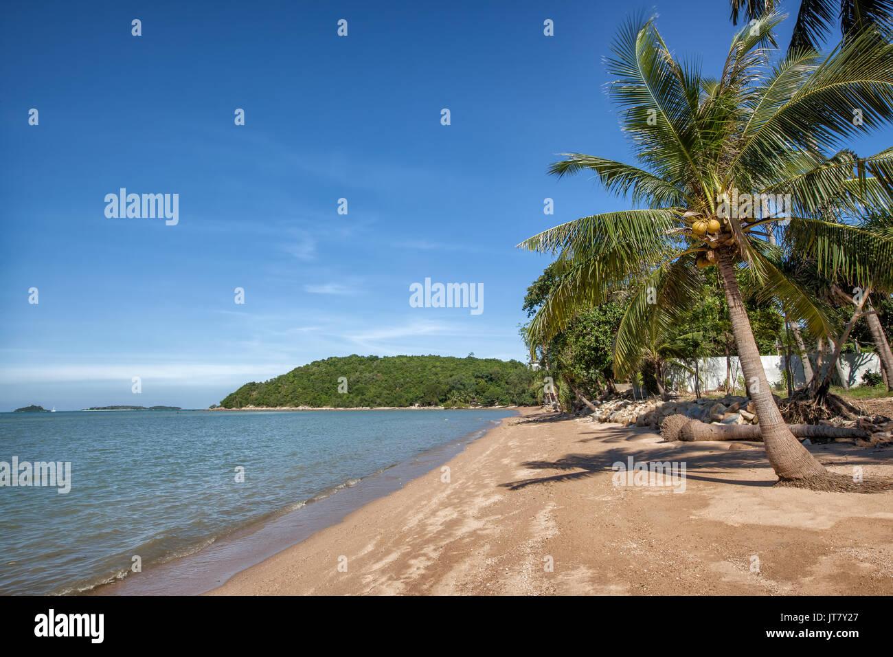 Bo Phut Beach, Koh Samui, Thailand Stockbild