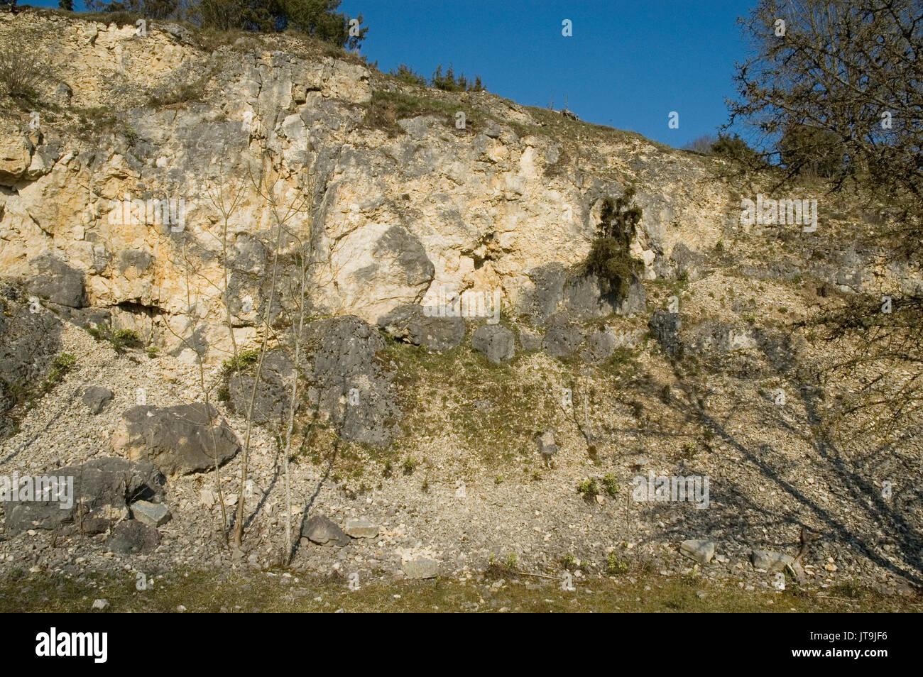 Kalkstein Mauer in Schwäbische Alb Stockbild