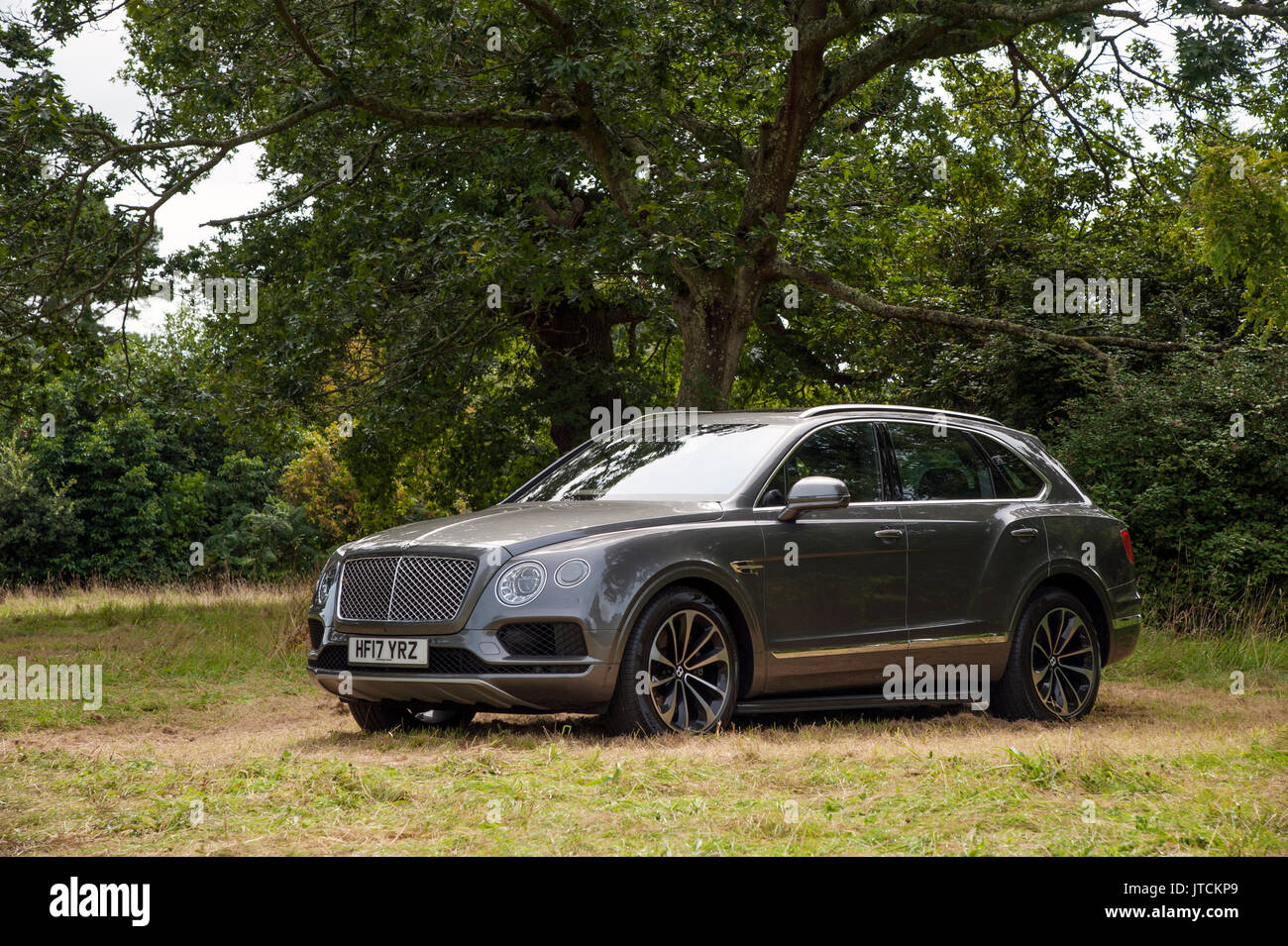 2017 Bentley Bentayga Stockbild