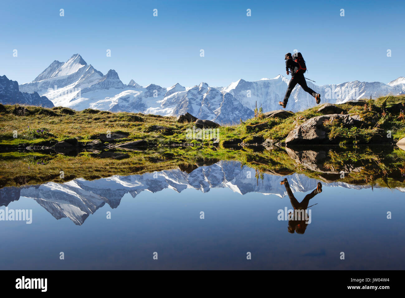 Ein Wanderer ist das Springen, während seine Aktion Körperhaltung in einem Bergsee über Grindelwald in den Schweizer Alpen reflektiert. Die berühmten Berner Oberland Gipfeln im Hintergrund. Stockbild