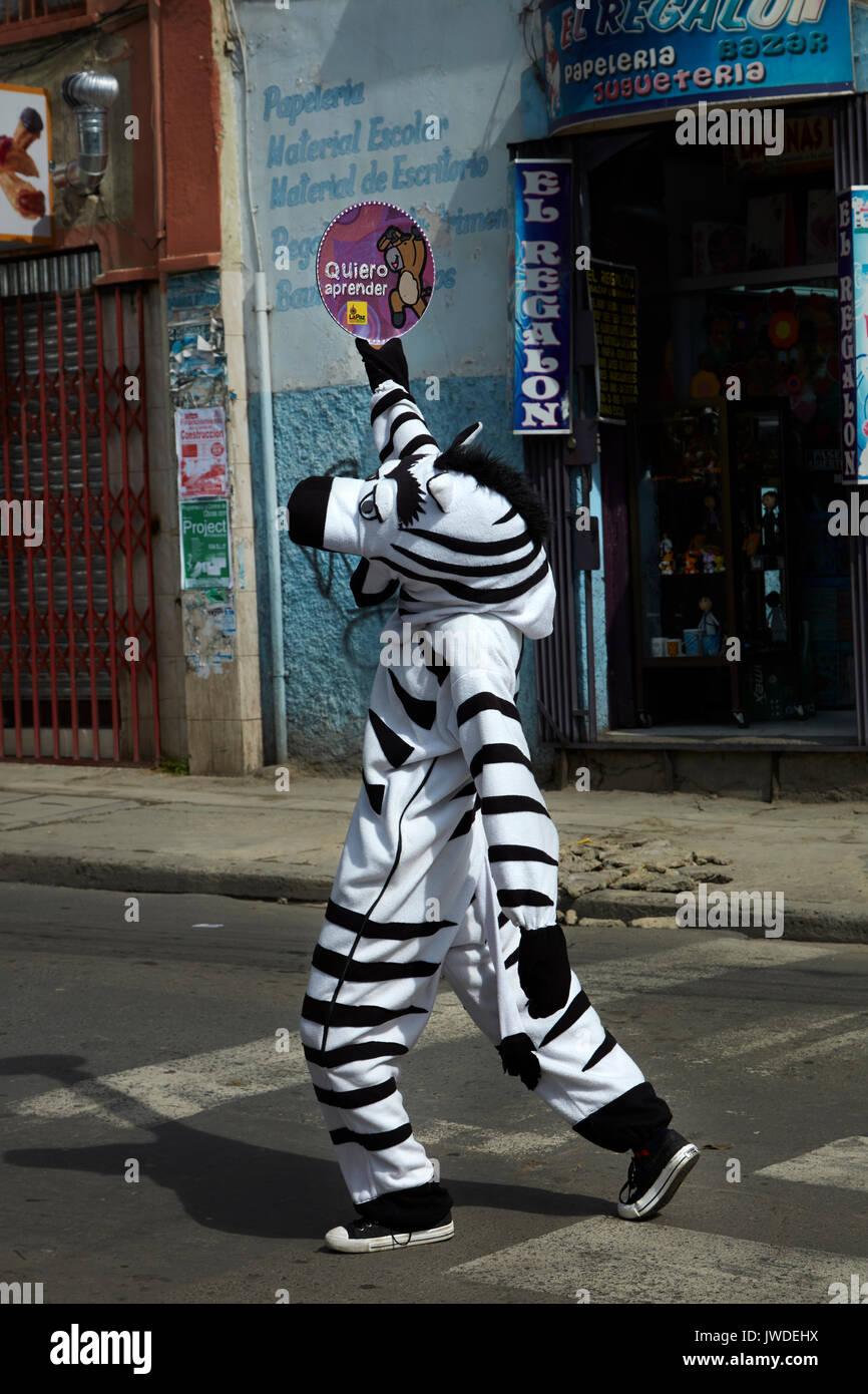 Verkehr Zebras helfen, Fußgänger die Straße überqueren, La Paz, Bolivien, Südamerika Stockbild