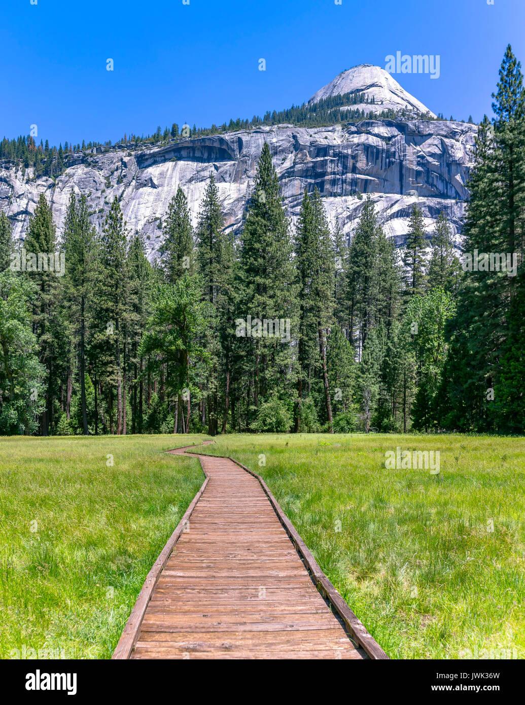 Holz- stepping Pfad in den Wiesen von Yosemite. Dieser Weg führt Sie über die Wiese, wo es eine Menge von stagnierendem Wasser Stockfoto