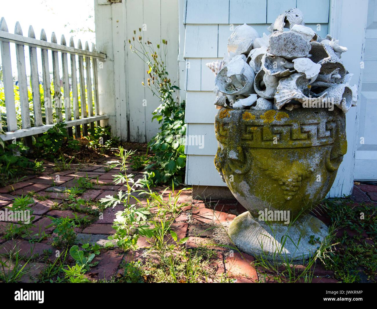 Sehr Garten Urne voller Muscheln auf einem Stein Terrasse Stockfoto IF95
