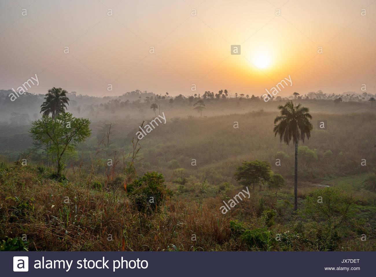 Ein Sonnenaufgang szenischen entlang der Straße nach Meliandou von Gueckadou. Stockbild