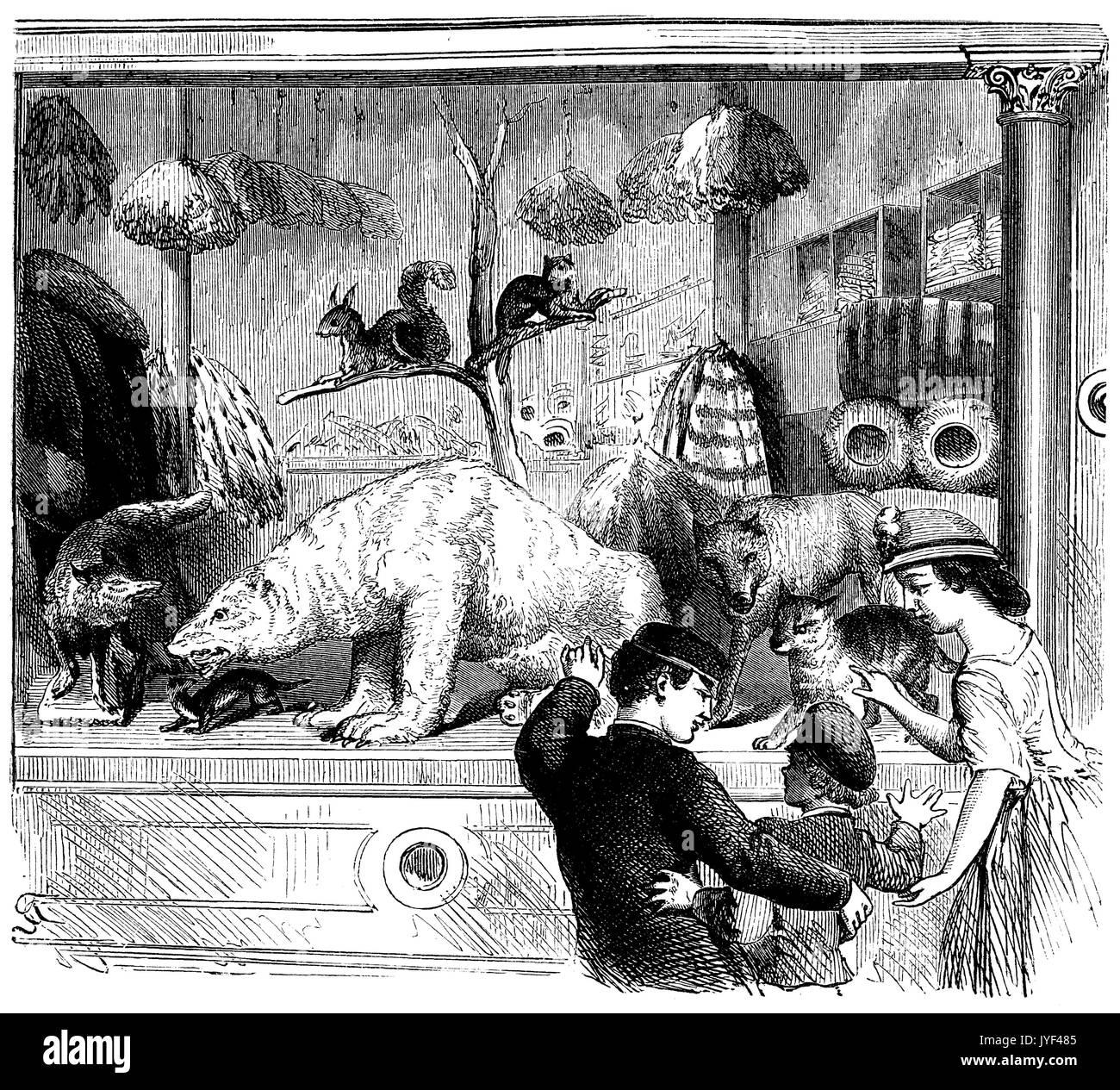 Schaufenster des 19. Jahrhunderts Furler Stockbild