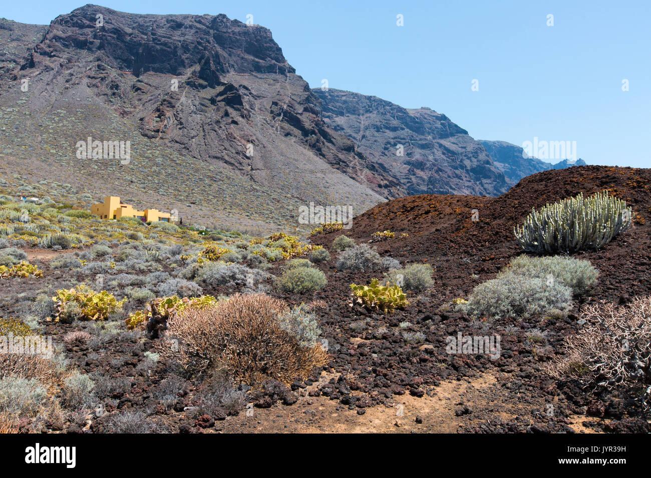 Punta de Teno, dem westlichsten Punkt auf Teneriffa auf den Kanarischen Inseln. Stockfoto