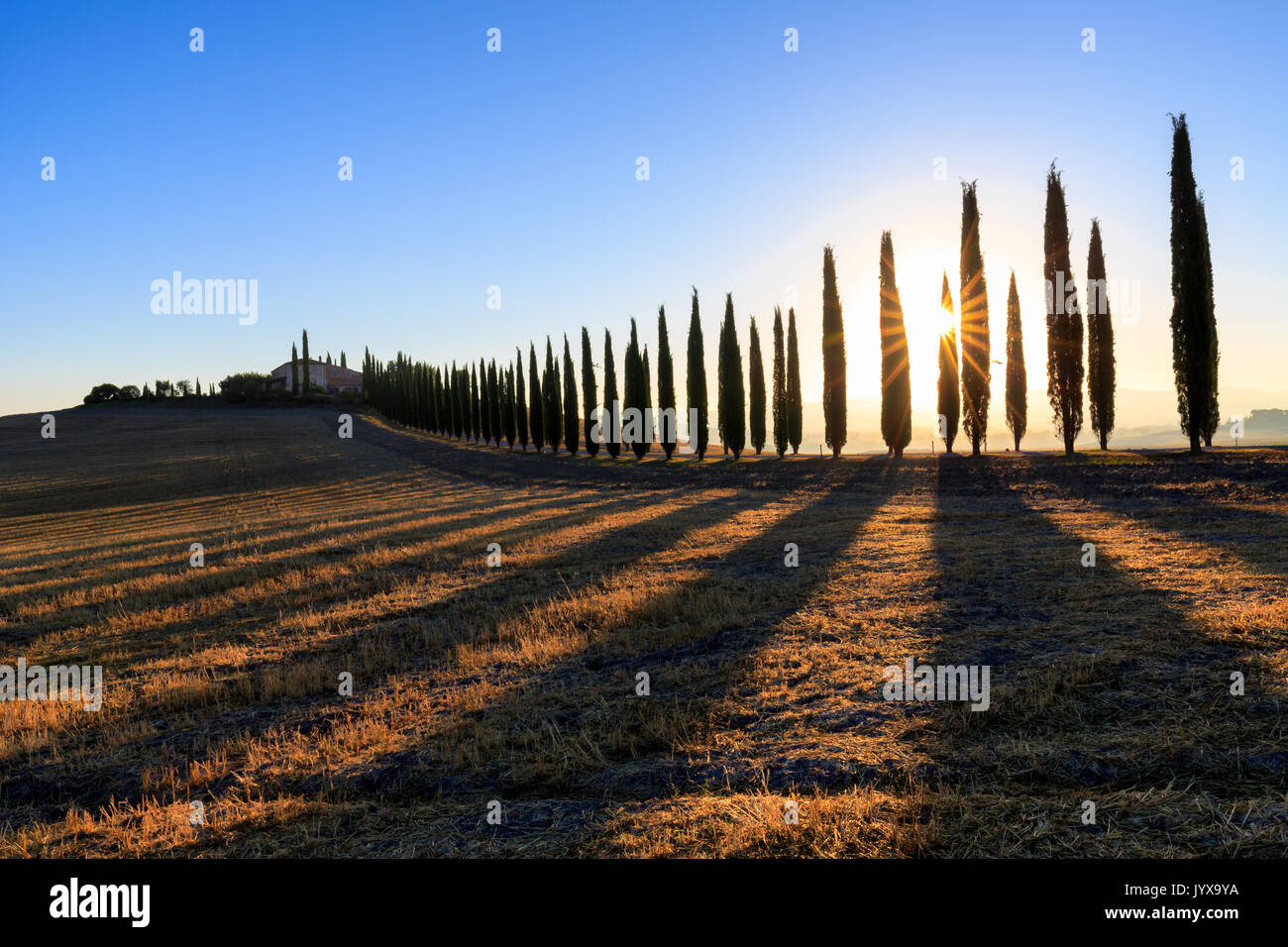 Toskanische Landschaft mit Zypressen und Farmstead bei Sonnenaufgang, Dämmerung, San Quirico d'Orcia, Val d'Orcia, Toskana, Italien Stockbild
