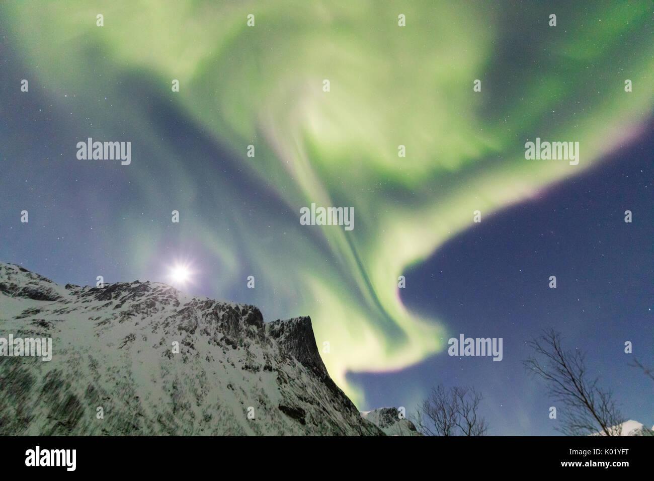 Ungewöhnlich Sternenklare Nacht Druckbare Malvorlagen Bilder ...