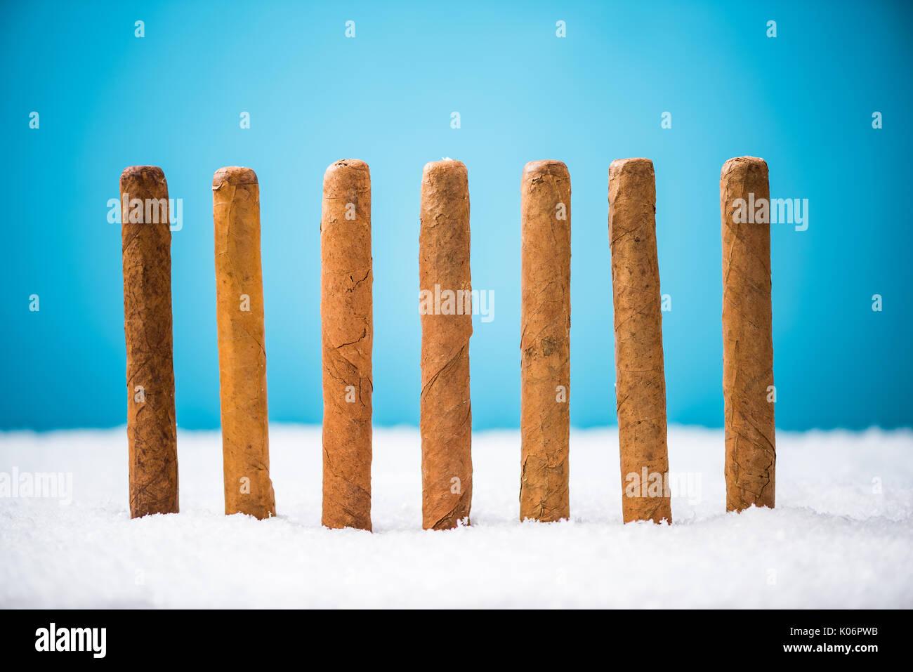 Kubanische Zigarren im Schnee, Weihnachten gif Idee Stockfoto, Bild ...