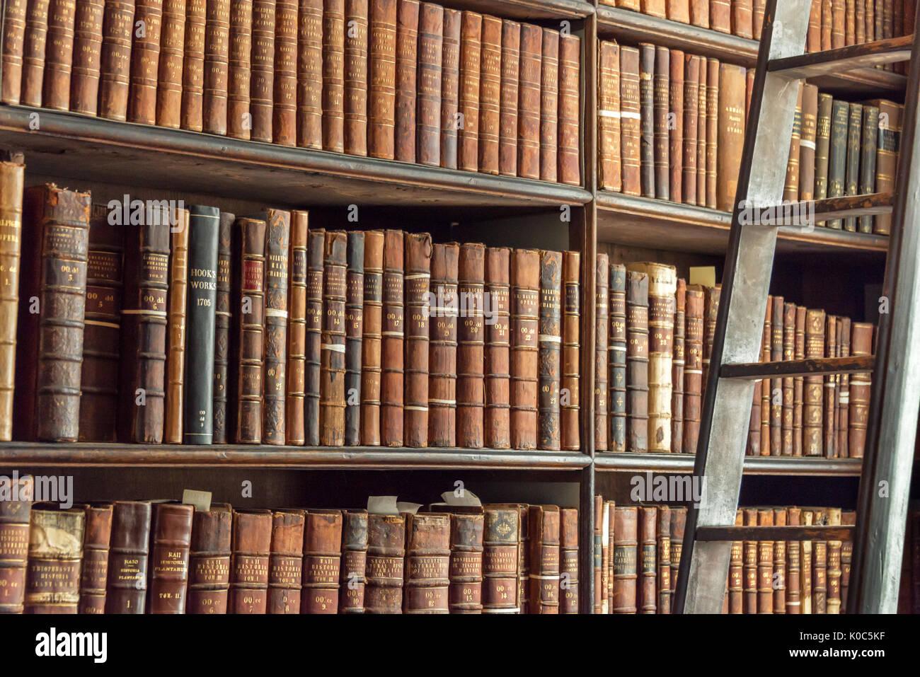 Alte Vintage Books Auf Holz Bücherregal Und Leiter In Einer