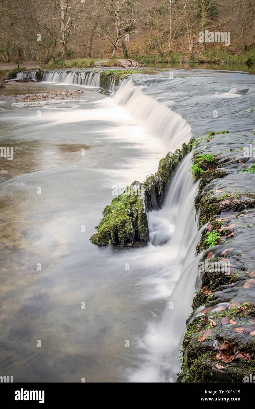 Kleiner Wasserfall im Herzen der Wälder des Nationalparks Dartmoor, Devon, Großbritannien. Stockbild