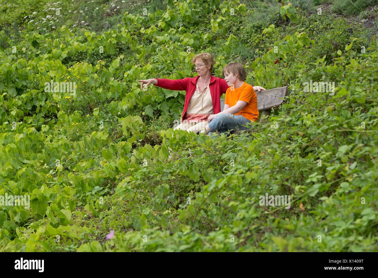 Klettersteig Pfalz : Calmont klettersteig foto bild world wein wandern bilder