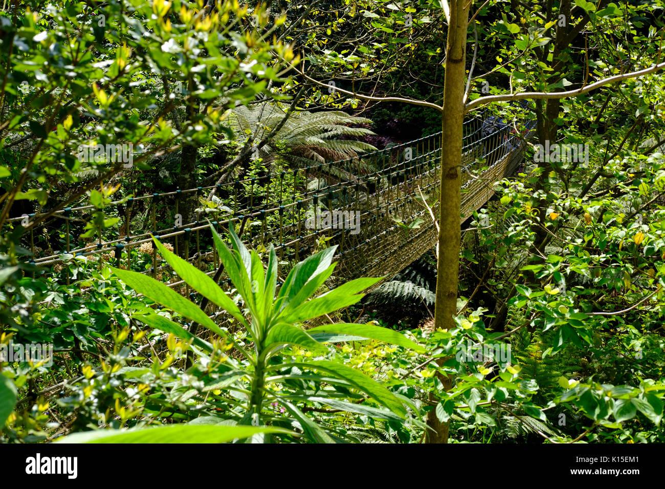 Birma Suspension Bridge in der Dschungel, die Verlorenen Gärten von Heligan, in der Nähe von St Austell, Cornwall, England, Vereinigtes Königreich Stockbild
