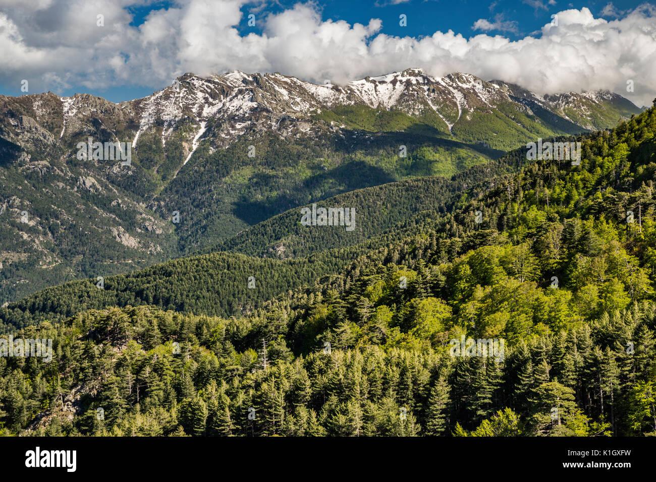 Punta Cappella massiv, Ansicht von GR20 Wanderweg in der Nähe von capannelle Berghütte, Korsika, Frankreich Stockbild