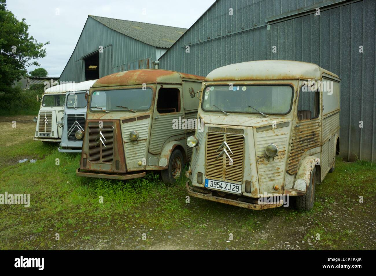 Eine Linie der Oldtimer Citroen H Vans Stockfoto