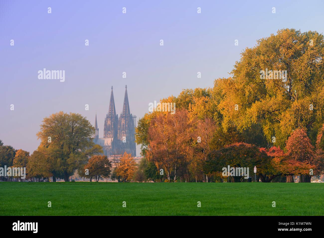 Rheinpark Im Herbst Vor Dem Kolner Dom Unesco Weltkulturerbe Nordrhein Westfalen Deutschland Stockfotografie Alamy