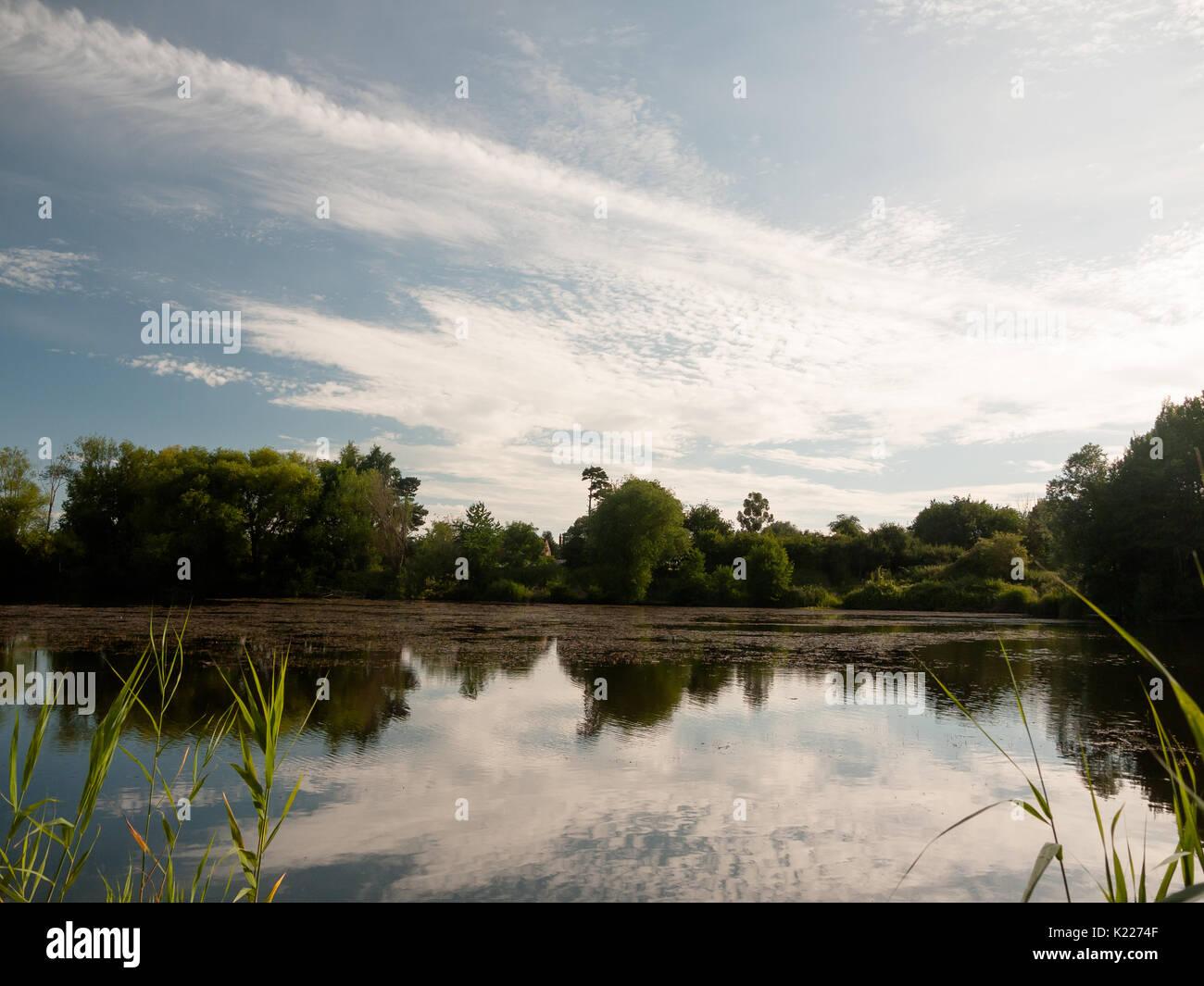 Schönen sommer see Szene außerhalb Bäume, Wolken im Wasser widerspiegelt; England; UK Stockbild