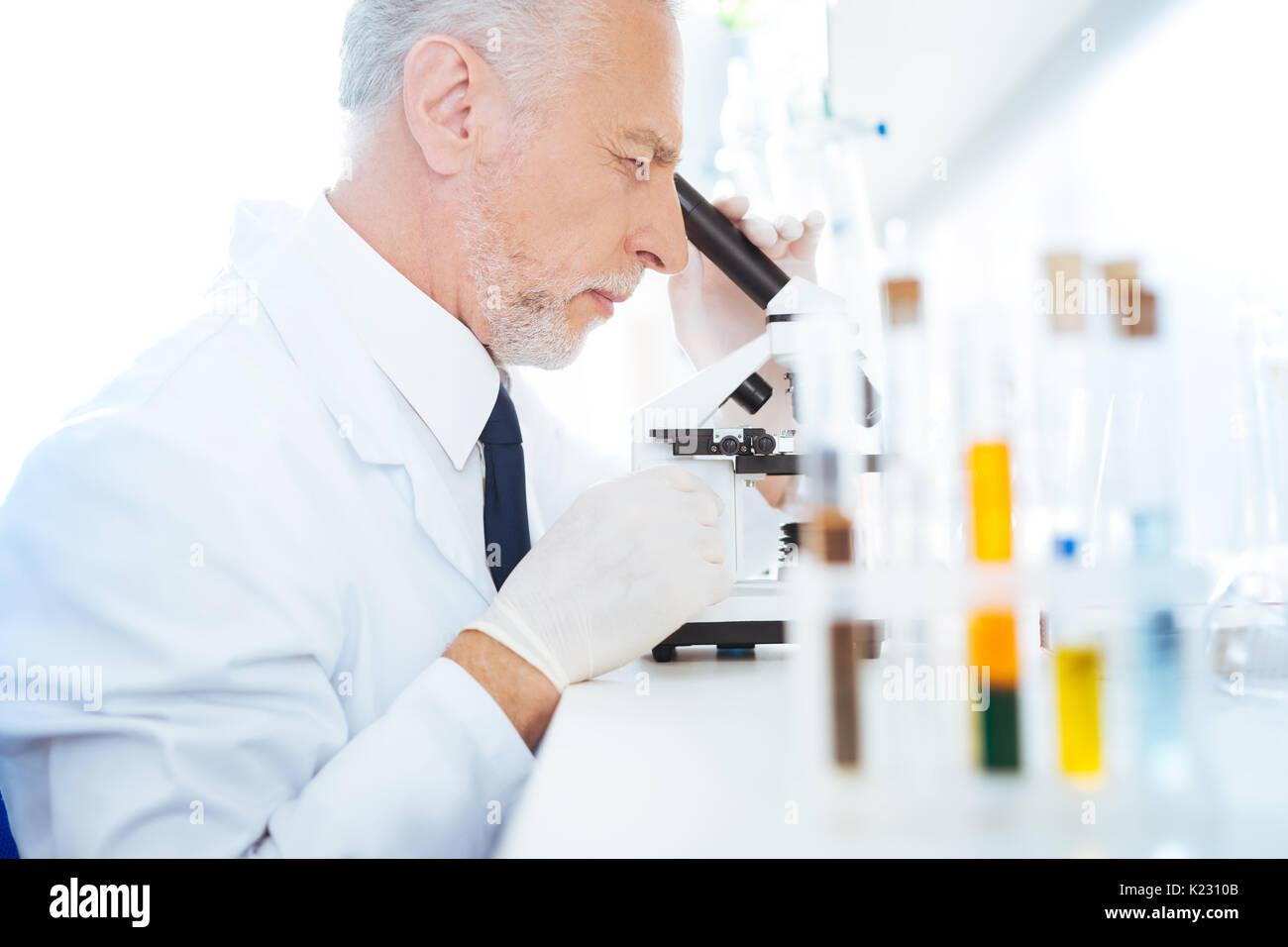 Aufmerksame Praktiker arbeiten mit Mikroskop Stockbild