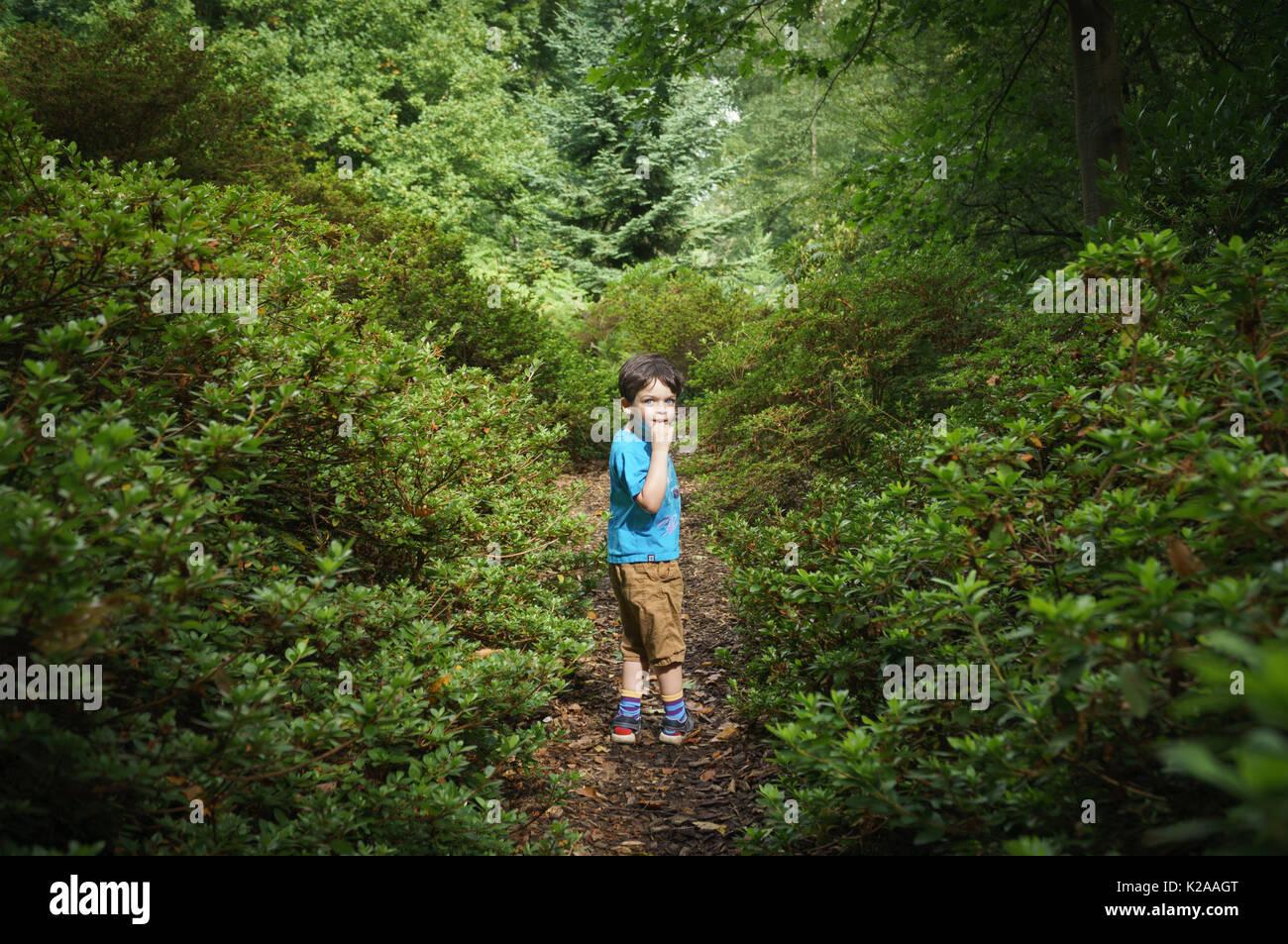 Kleiner Junge im Wald verloren Stockbild