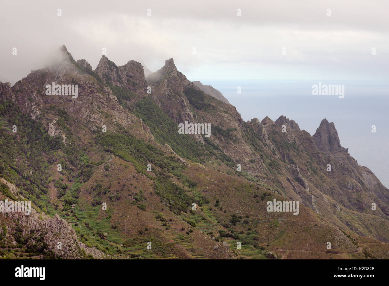 Erloschene Vulkane in der Cloud-ummantelte Anagagebirge von subtropischen Lorbeerwälder über Taganana Dorf flankiert, Stockfoto