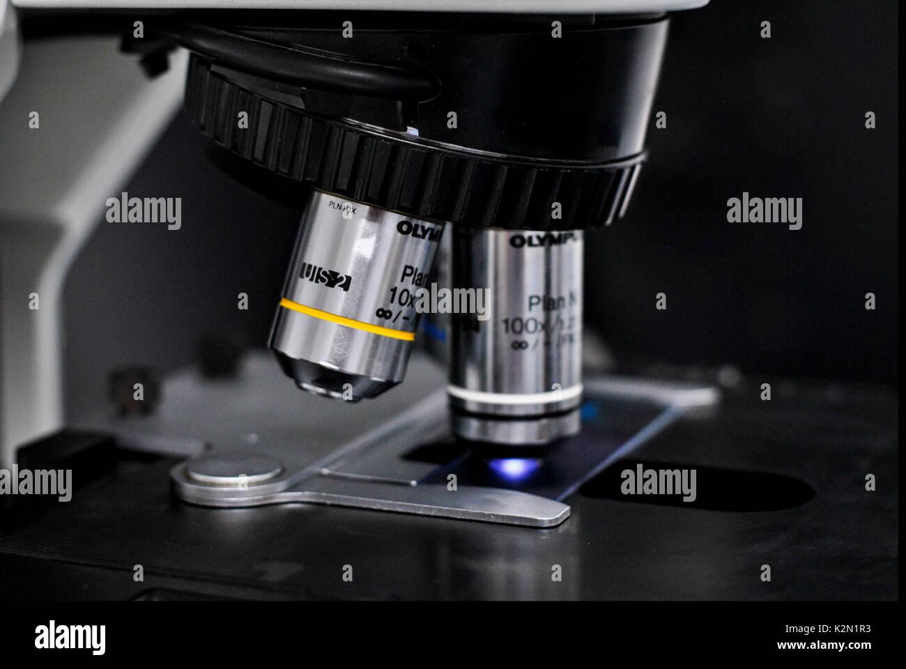 Tlg kinder mikroskop set im koffer  fach mikroskop set