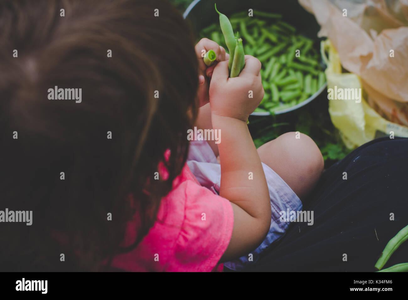 Junge Mädchen schnappt frische grüne Bohnen. Stockbild
