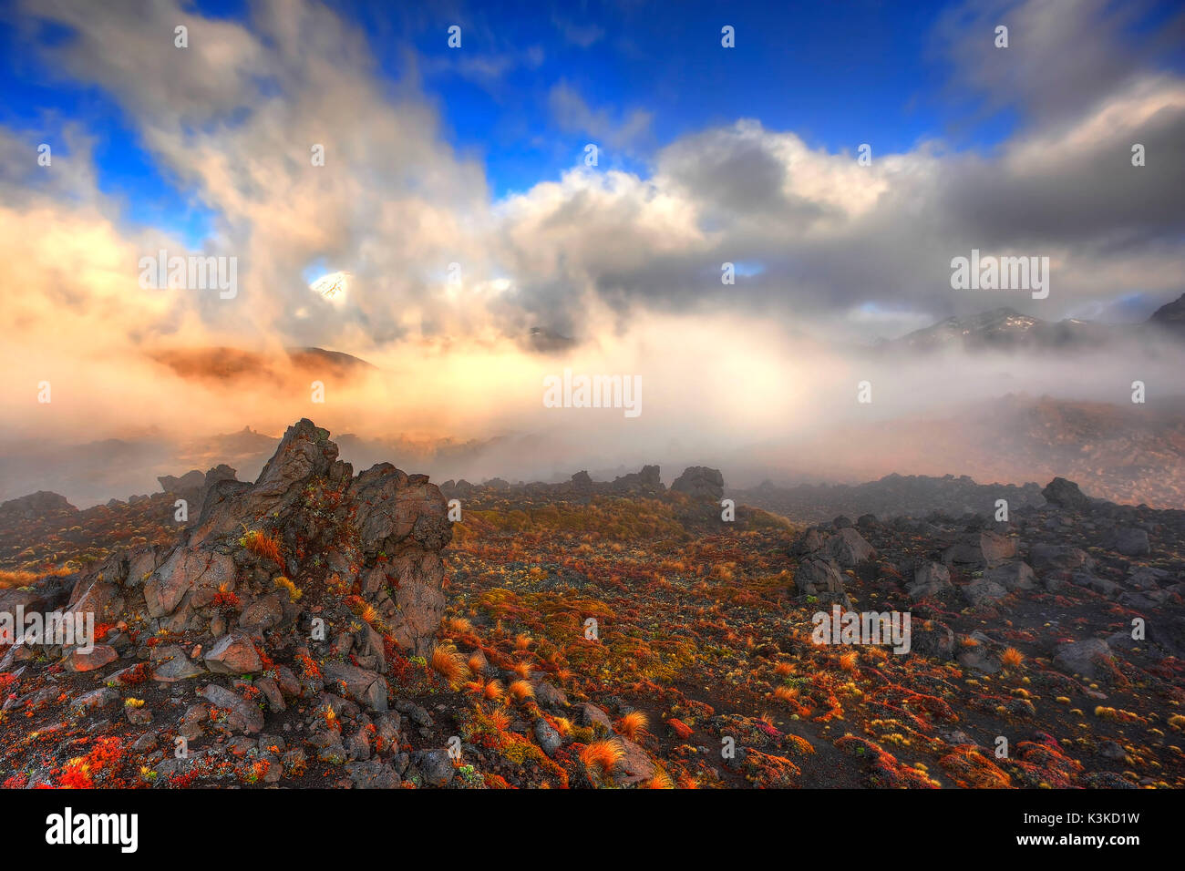 Morgen Nebel und Licht Stimmung in der Oturere Tal, Tongariro National Park, Neuseeland. Wolken ziehen über Cleft-kinder Vulkangestein, mit unterschiedlichen Gras, Flechten und Flechten. Stockbild