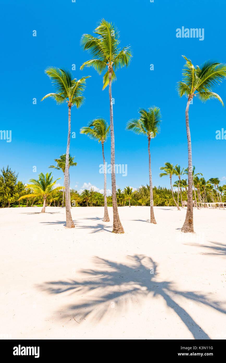 Juanillo Beach (playa Juanillo), Punta Cana, Dominikanische Republik. Stockbild