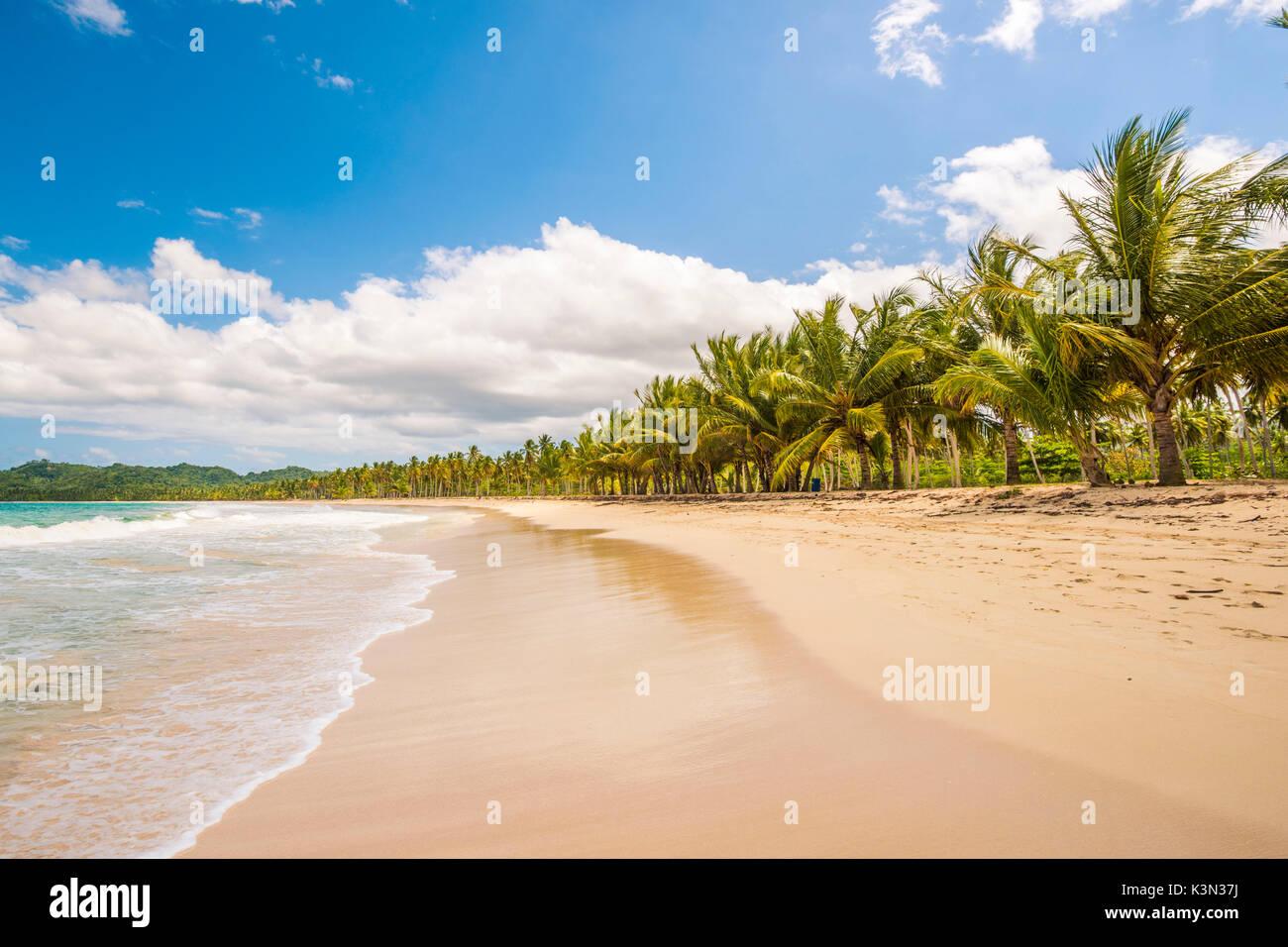 Playa Rincon, Halbinsel Samana, Dominikanische Republik. Stockbild
