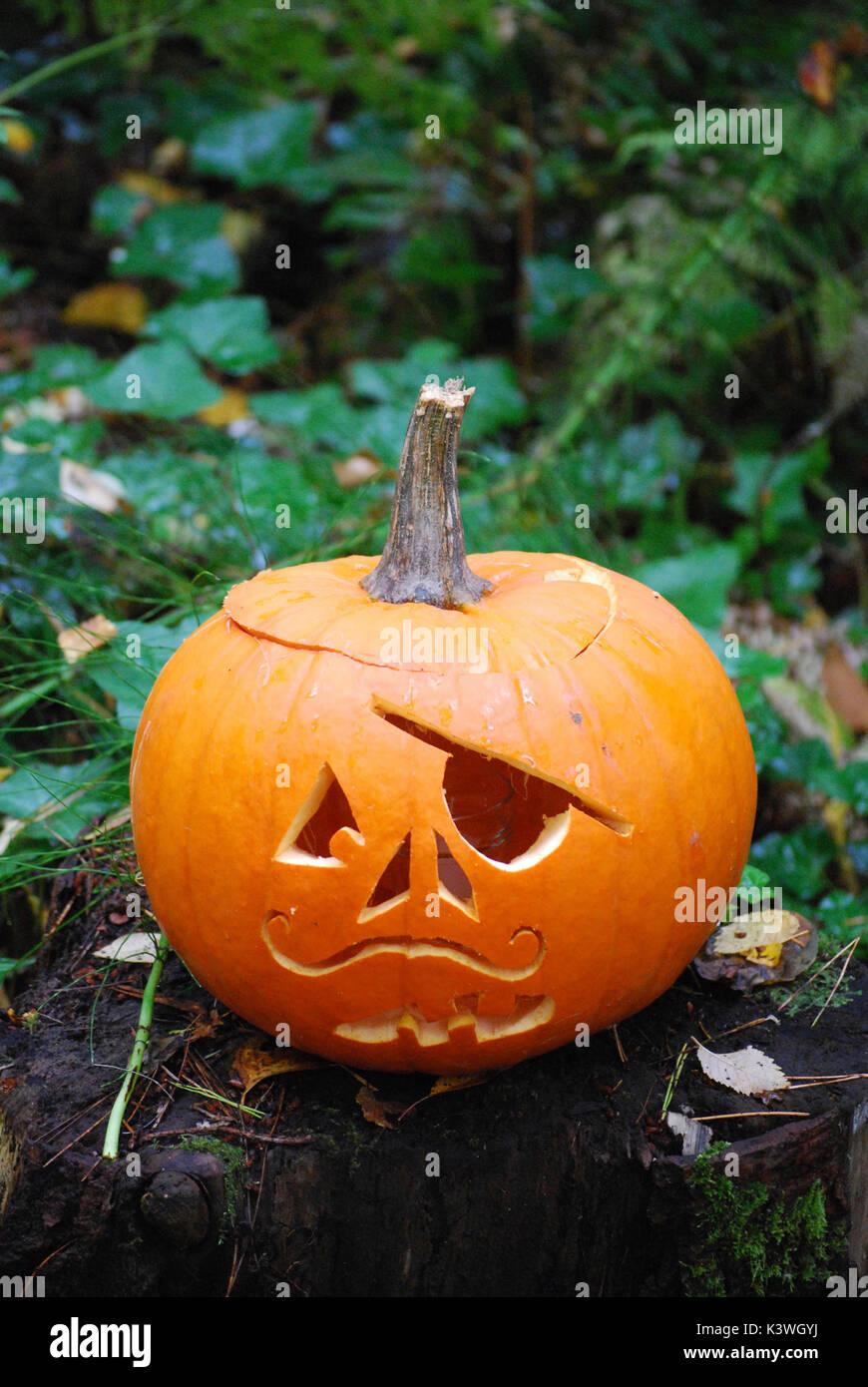 Kuerbis Schnitzen Pirat.Pirate Kurbis Halloween Jack O Lantern Stockfotografie Alamy