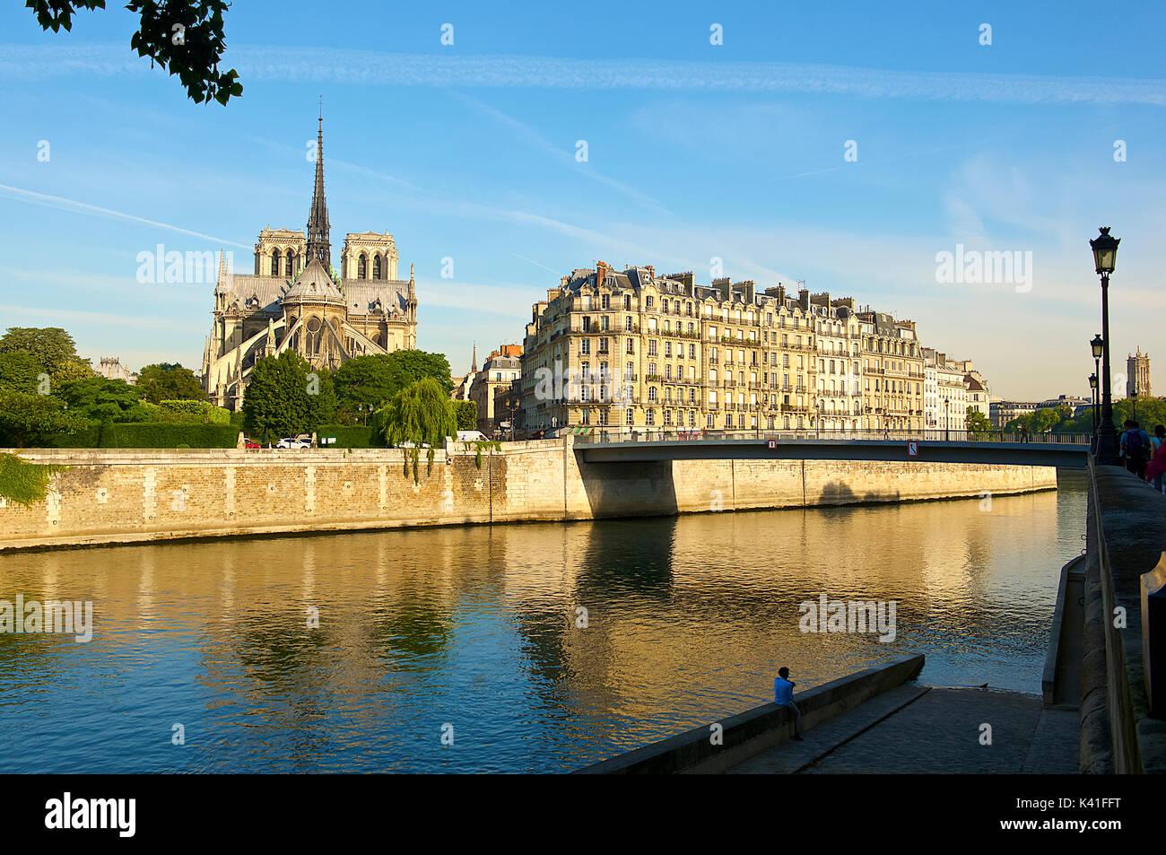 Seine und die Kathedrale Notre Dame, Paris, Frankreich Stockbild