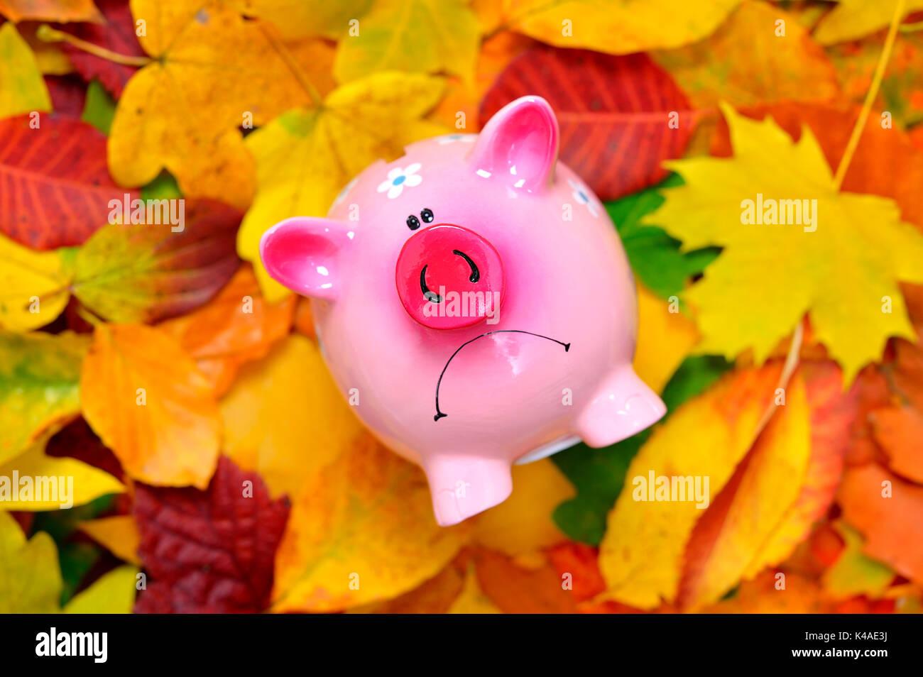 Schlechte Laune Sparschwein, niedrige Zinsen Stockbild