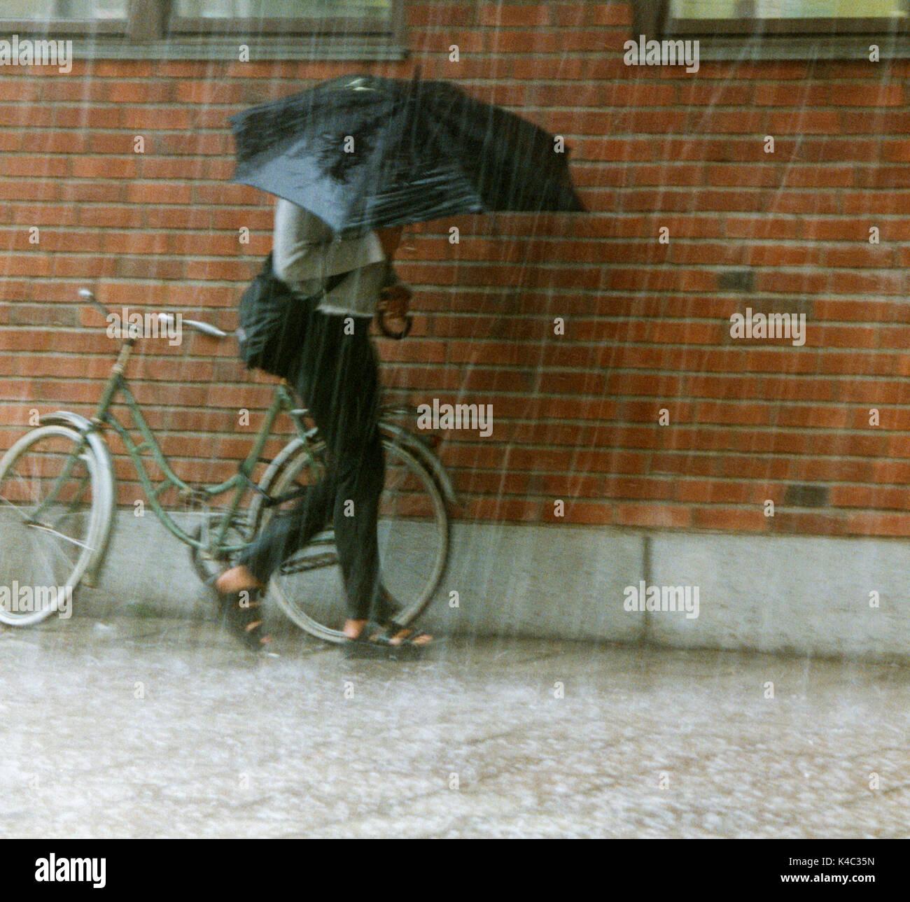Frauen unter umbrellaat Sommer Regen 2011 Stockbild