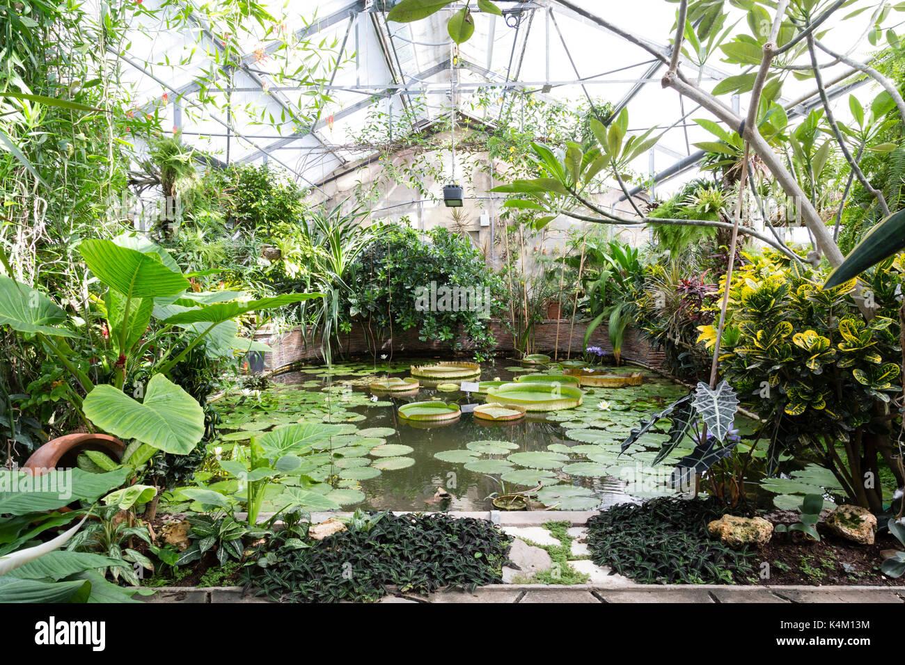 Frankreich, Seine-Maritime (76), Rouen, Le Jardin des ...