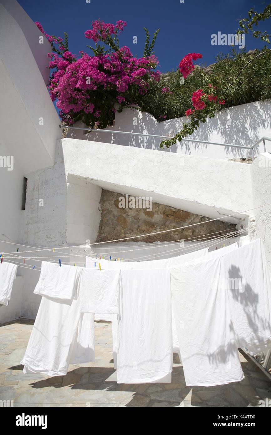 Waschmaschine auf dem Trockenen sitzen und Bougainvillea Overhead, Tilos, Griechenland Stockbild