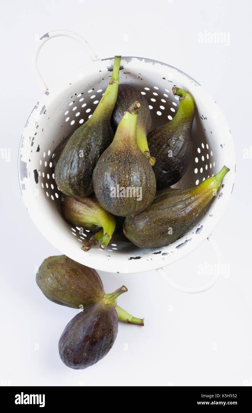 Ficus Carica. Frisch geernteten Feigen in einem Sieb. Stockbild