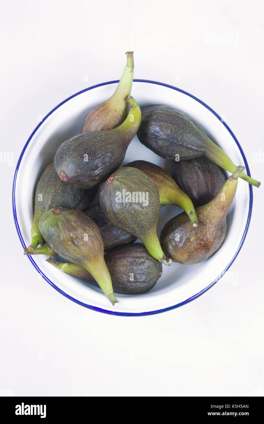 Ficus Carica. Frisch geernteten Feigen in einem Emaille Schüssel. Stockbild