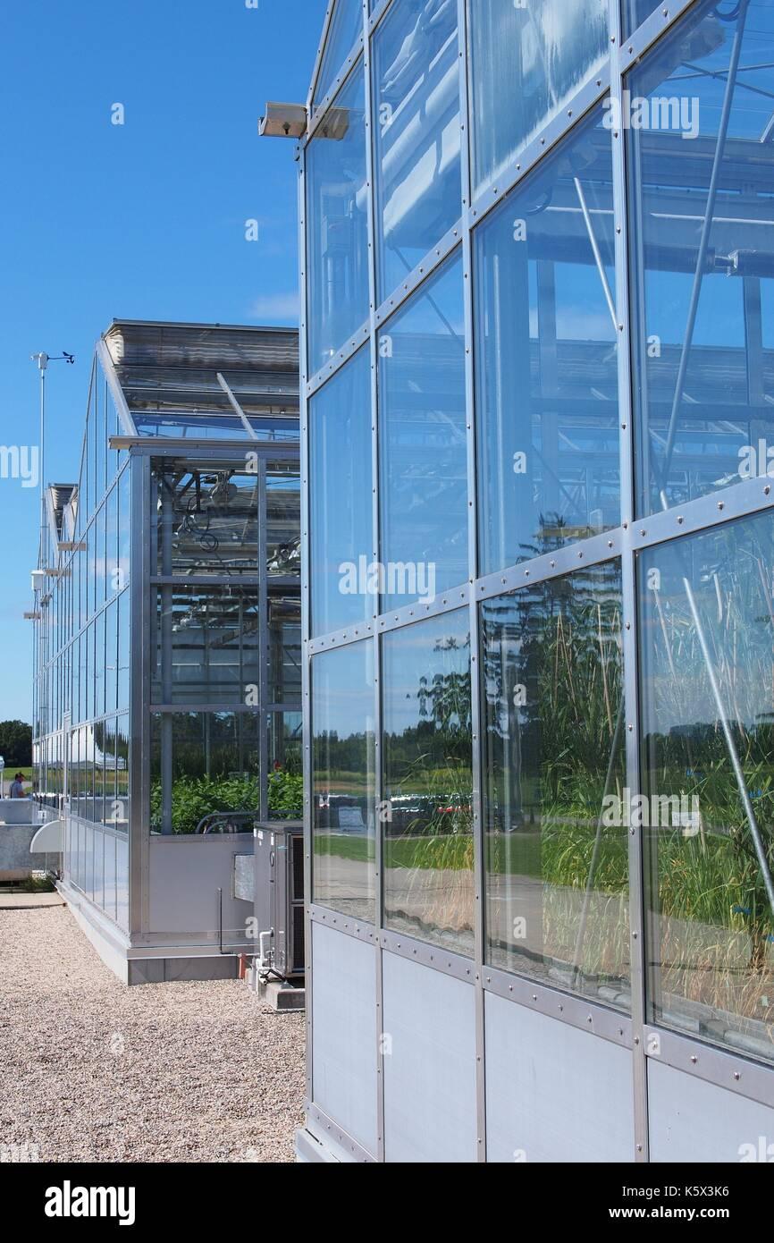 Vorderansicht der Forschung Gewächshäuser Landwirtschaft Kanada, 960 Carling Avenue, Ottawa, Ontario, Kanada. Stockbild