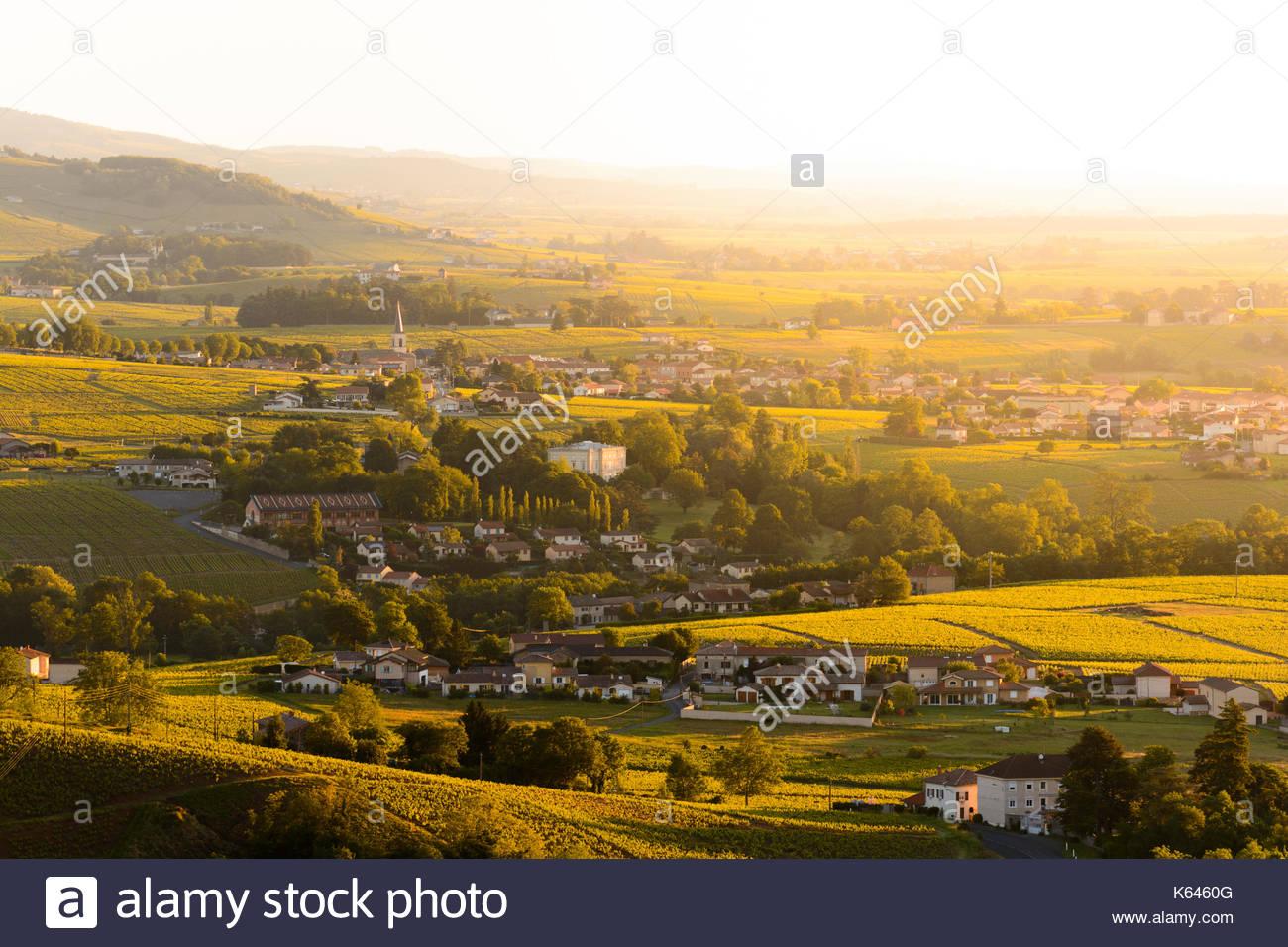 Landschaft und Dorf von Beaujolais land bei Sonnenaufgang in Frankreich Stockbild
