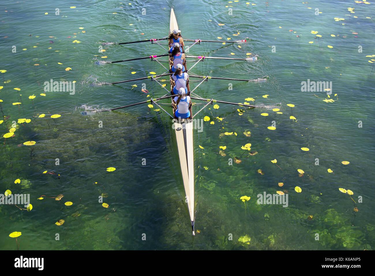 Meine Damen fours rudernde Mannschaft im Rennen auf dem See Stockbild