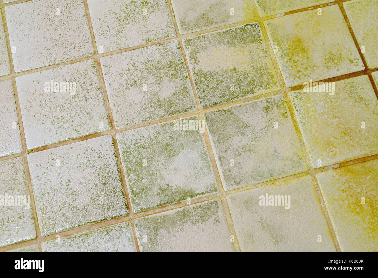 toxic mold stockfotos toxic mold bilder alamy. Black Bedroom Furniture Sets. Home Design Ideas
