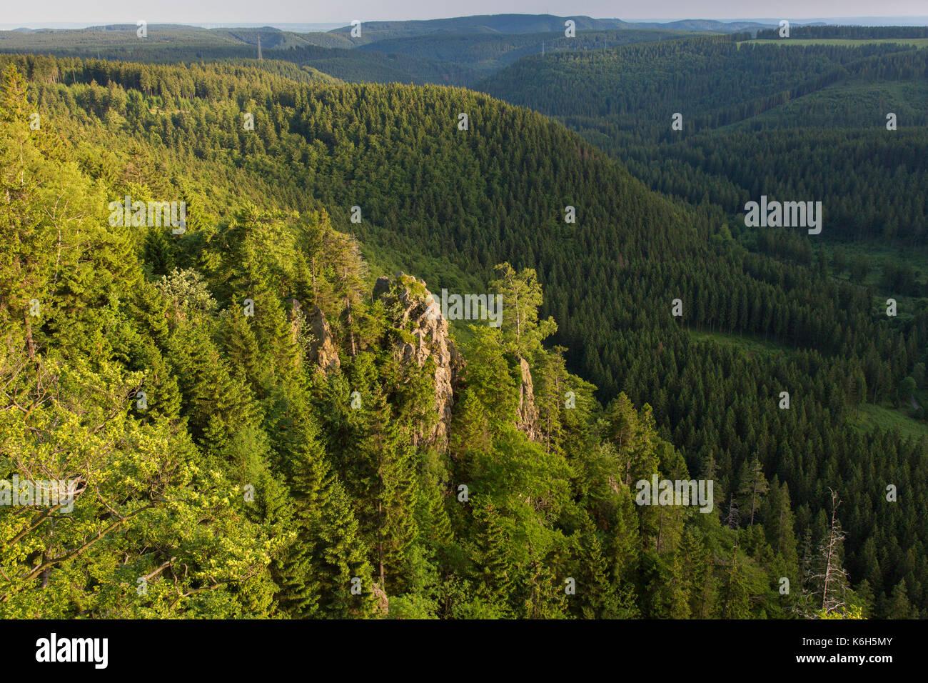 Hahnenkleeklippen/Hahnenklee Crags am oberen Harz / Oberharz im Nationalpark Harz, Niedersachsen, Deutschland Stockbild
